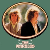 The Marbles - Only One Woman