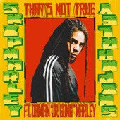 Skip Marley - That's Not True