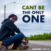 Samuel Medas - Can't Be the Only One artwork