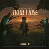 Dre Island - Never Run Dry