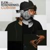 ELEW - Elew Plays Rosenwinkel - Cubism  artwork