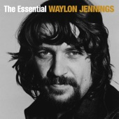 Waylon Jennings - Rose In Paradise