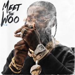 Meet The Woo, Vol. 2