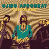 Ojibo Afrobeat - Heatwave