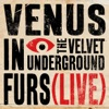 Venus In Furs Live Single
