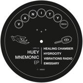 Huey Mnemonic - Vibrations Radio
