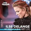 Ilse DeLange - Het Regent In Mijn Hart (Live) kunstwerk