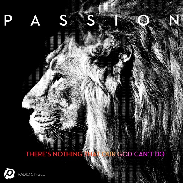 There's Nothing That Our God Can't Do (Radio Version) [feat. Kristian Stanfill] - Single