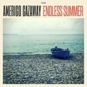 Amerigo Gazaway - Interlude