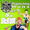 Stefan Rauch - 15er Steyr (feat. Hons Petutschnig) Grafik