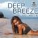 Various Artists - DEEP BREEZE, Vol. 14