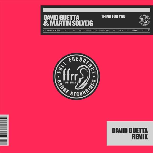 Thing for You (David Guetta Remix) - Single