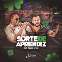 Sorte de Aprendiz (feat. Thiago Brava)-Salgadinho