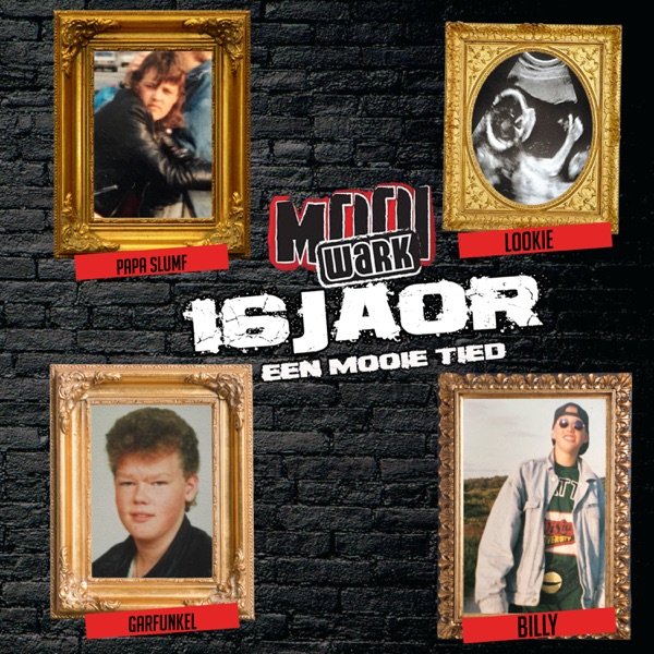 16 Joar ( Een Mooie Tied ) - Single