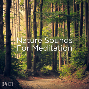 Nature Sounds Nature Music & Nature Sounds - !!#01 Nature Sounds for Meditation