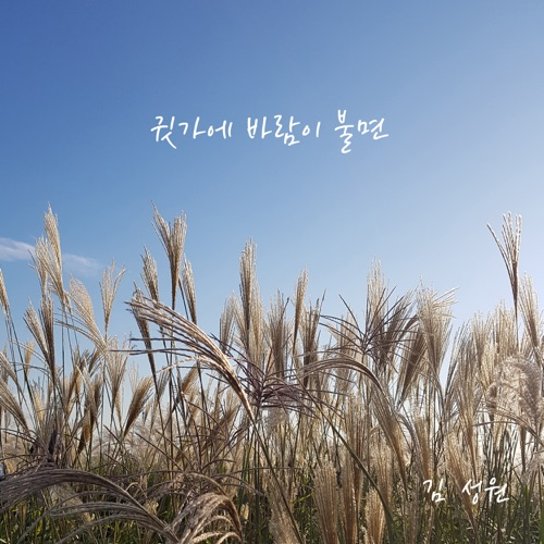 Sungwon Kim – When the Wind Blows Over My Ears – Single