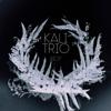 KALI Trio - Riot kunstwerk