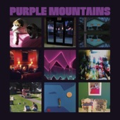 Purple Mountains - Darkness and Cold