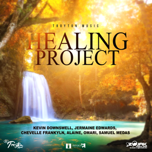 Various Artists - Healing Project