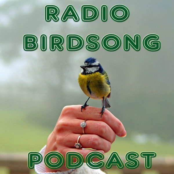 The Radio Birdsong Podcast