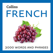 Learn French: 3000 Essential Words and Phrases (Unabridged)