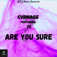 Are You Sure (feat. YC) - Single Mp3 Download