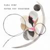 Nada Surf - Never Not Together  artwork