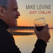 Mike Levine - Gliding