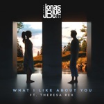 What I Like About You (feat. Theresa Rex) - Single
