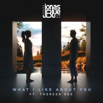 Jonas Blue - What I Like About You