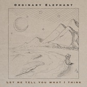 Ordinary Elephant - Let Me Tell You What I Think