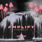 AMPLIFY - Seduction