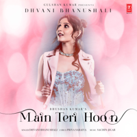 Main Teri Hoon - Single