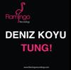 Deniz Koyu - Tung! artwork