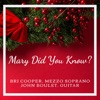 Mary Did You Know? (feat. John Boulet & Guitar) - Single ジャケット写真