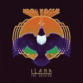 Mdou Moctar - Kamane Tarhanin