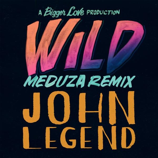 Wild (MEDUZA Remix) - Single