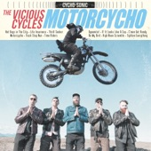 The Vicious Cycles - Hot Dogs in the City