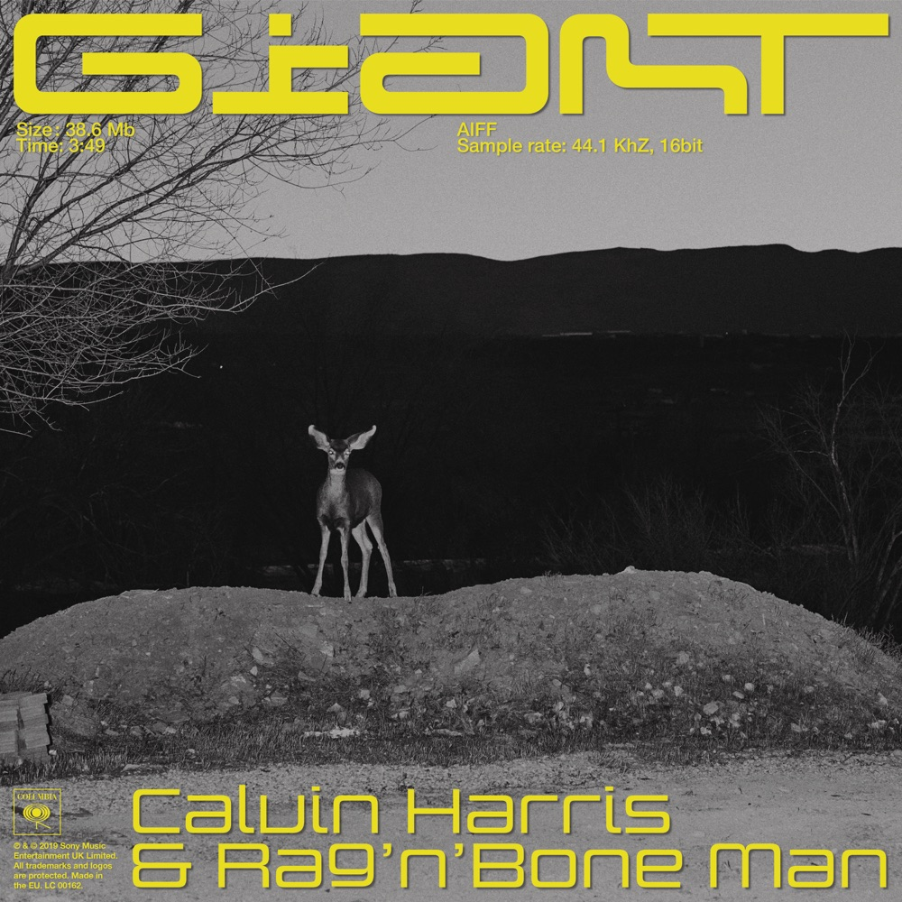 Calvin Harris, Rag'n'Bone Man Giant