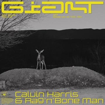 CALVIN HARRIS & RAGNBONE MAN ***Giant