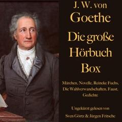 Johann Wolfgang von Goethe - Die große Hörbuch Box: Märchen, Novelle, Reineke Fuchs, Die Wahlverwandschaften, Faust, Gedichte