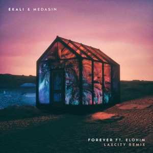 Forever (feat. Elohim) [Laxcity Remix] - Single Mp3 Download