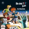 069/Die Rätselfalle - Die drei ??? Kids