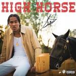 Shaffer Jones - High Horse