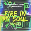 Fire In My Soul (feat. Shungudzo) [Remixes] - EP