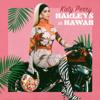Katy Perry - Harleys in Hawaii artwork