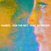 For the Sky (feat. Ed Droste) - Single
