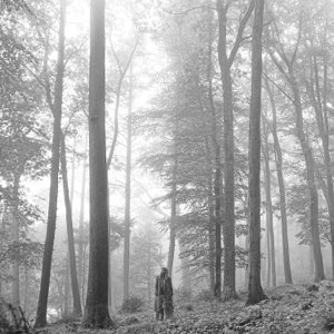 Taylor Swift – folklore [iTunes Plus M4A]