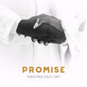 Promise - Adekunle Gold & Simi