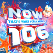 NOW That's What I Call Music! 106 - Various Artists Cover Art